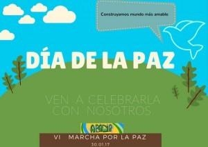 cartel Paz 2017