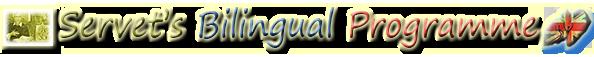 IES Miguel Servet Bilingual Programme Site