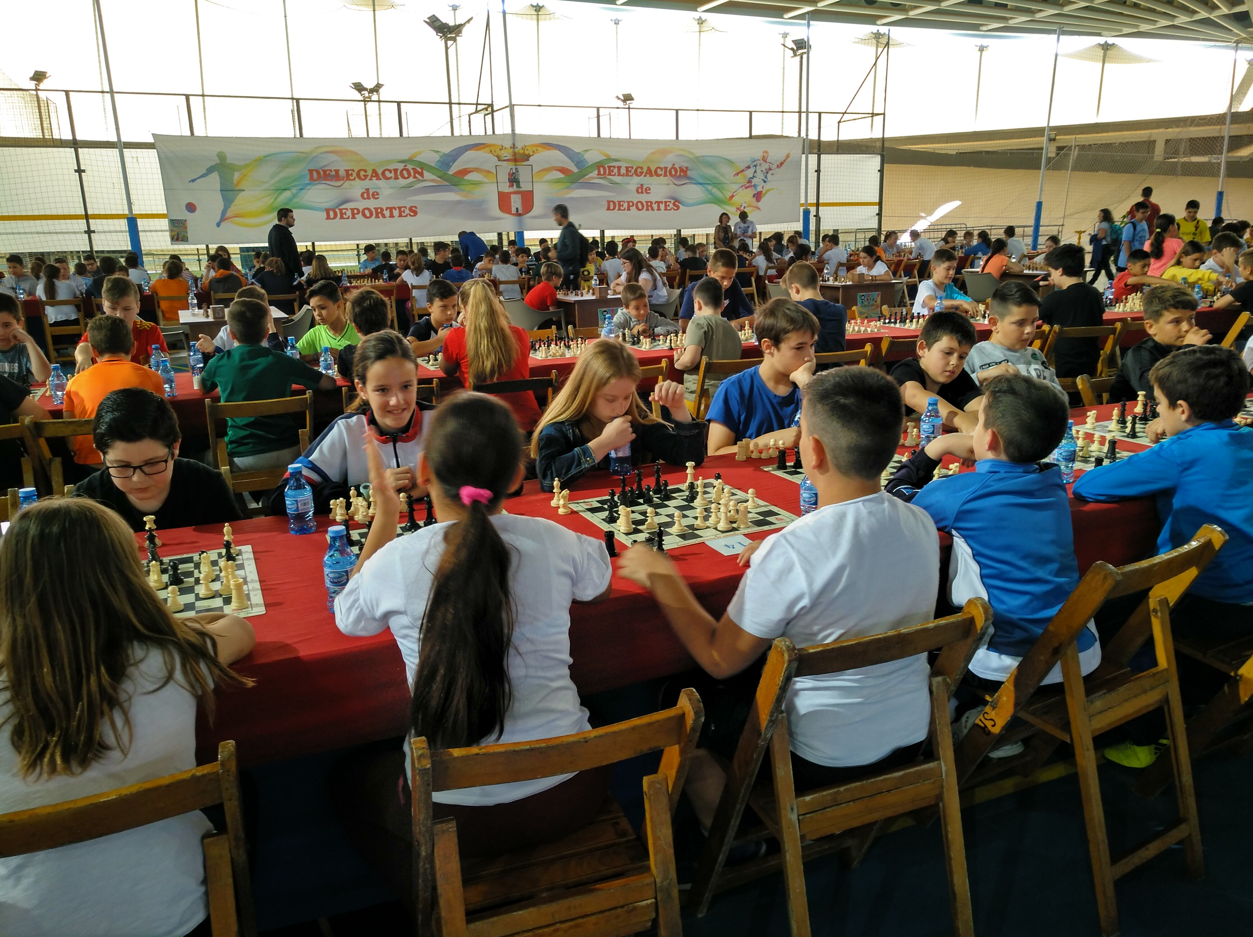 2018-2019_ajedrez_22