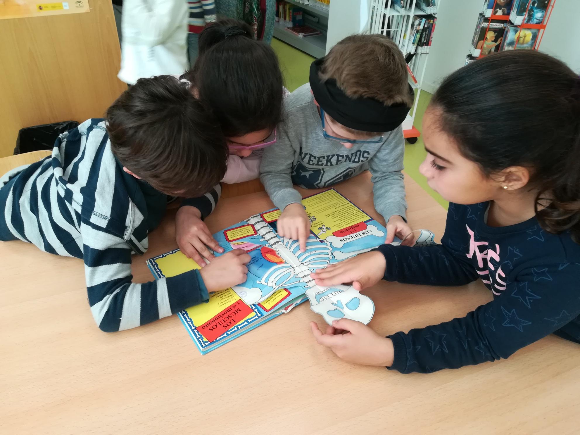 2018-2019_biblioteca_11