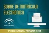Información Sobre de matrícula electrónica