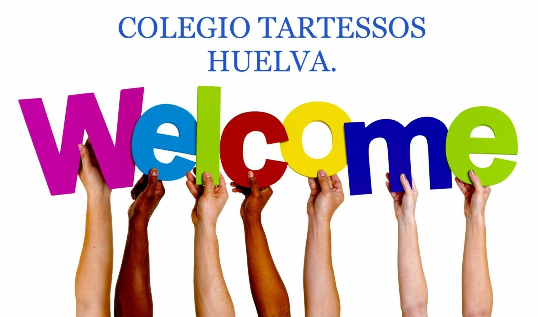 Welcome nueva web