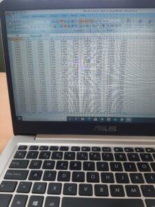 pantalla de ordenador con una tabla excel en tinta