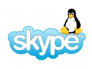 imagen del logo de skype