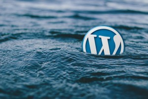 imagen del logo wordpress