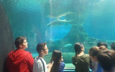 Aquarium Costa de Almería