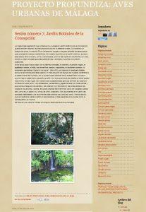 Proyecto Profundiza: Aves Urbanas de Málaga