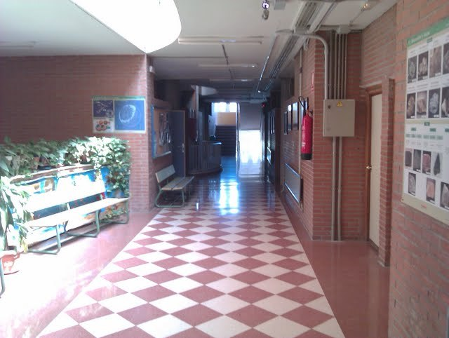 4-pasillo