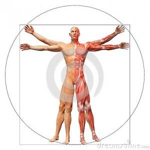 anorexia y bulimia, dieta mediterránea, dieta equilibrada ,etc