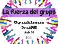TALLER-ADSD.-GYMKHANA