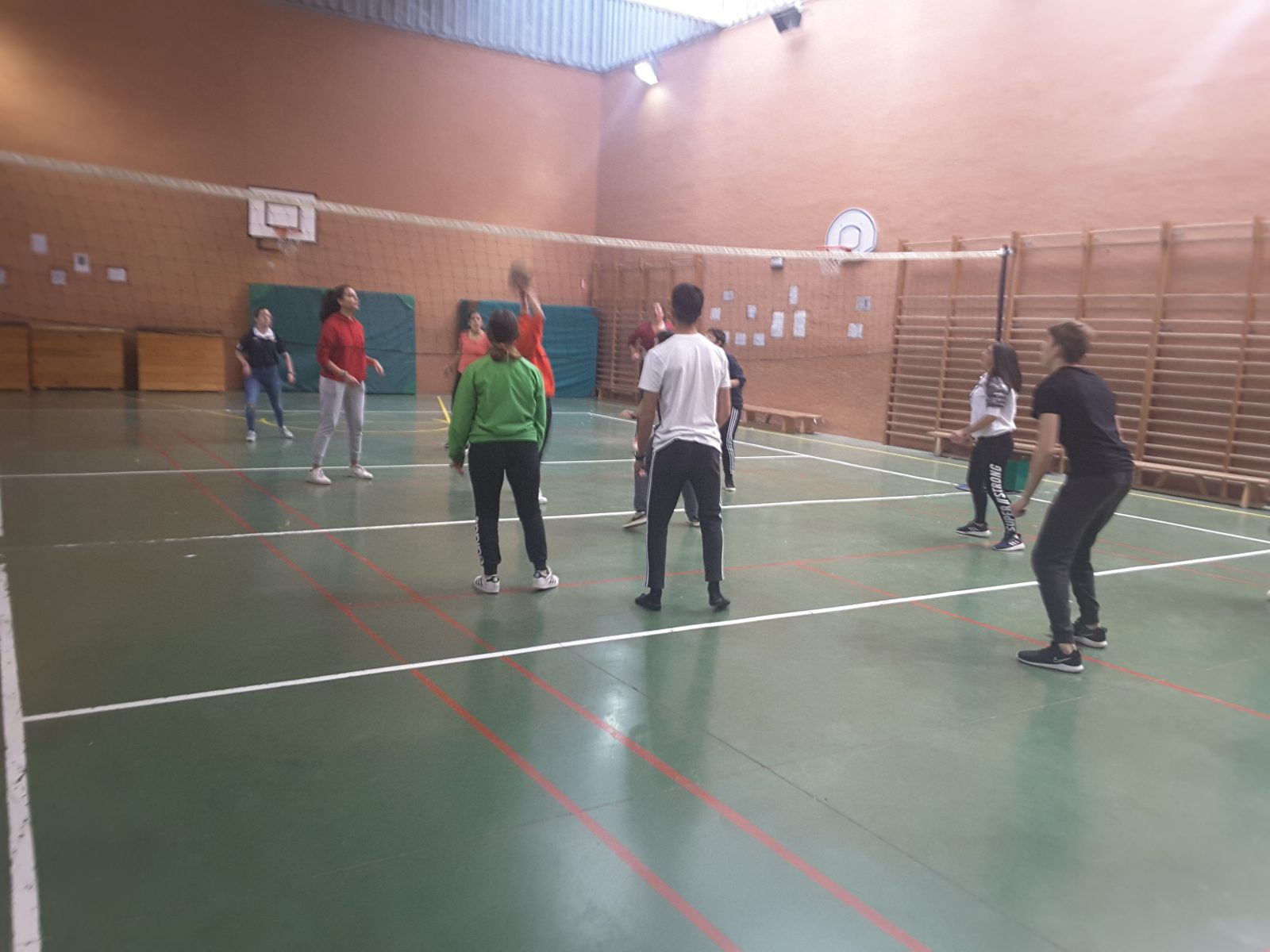 Campeonato de voleibol mixto