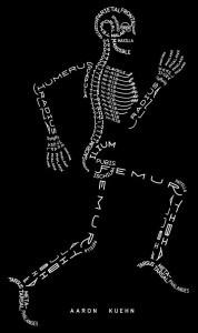 huesos en inglés
