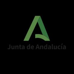 Información  C.E.I.P. Concepción de Estevarena